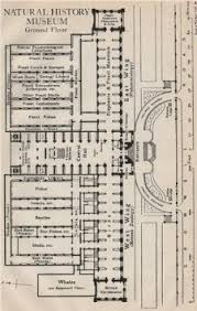 buy natural history museum ground floor vintage plan south