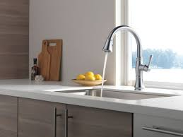 Pictures Of Kitchen Sinks And Faucets by Faucet Com 9197 Dst In Chrome By Delta