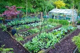 Small Vegetable Garden Ideas Design Your Vegetable Garden Nightcore Club