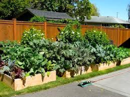 Vegetable Gardens Designs Markcastroco - Backyard vegetable garden designs