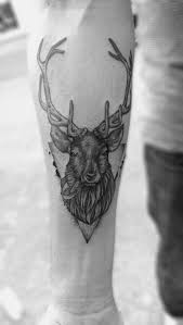 stag head designs best 20 stag tattoo design ideas on pinterest elk tattoo deer