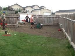 backyard fence line
