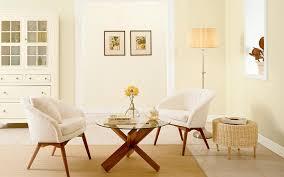 livingroom paint color simple decor room livingrooms cuantarzon com
