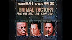 animal factory special edition blu ray dvd talk review of the