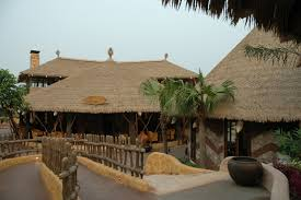 Mexican Thatch Roofing by Synthetic Thatching Bamboo Habitat