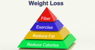 does high fiber diet helps in weight loss