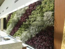 green walls llc blog