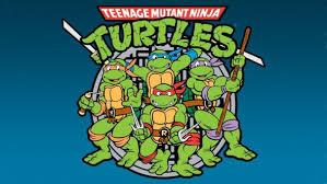 rise teenage mutant ninja turtles nickelodeon orders