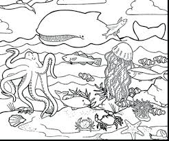 underwater dinosaurs coloring pages underwater coloring pages medium size of underwater coloring pages