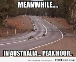 Australia Meme - 27 peak hour in australia meme irish around oz