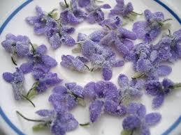 les fleurs comestibles en cuisine la cuisine aux fleurs the butterfly project