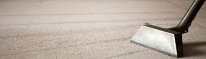 Area Rugs Greenville Sc Spotless Carpet Cleaning And More Providing The Best Possible