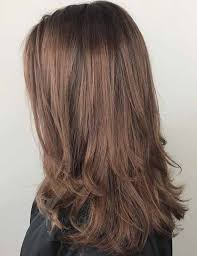 from dark brown to light brown hair 10 highlights and lowlights styling ideas for light brown hair