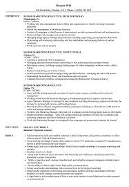 marketing executive resume senior marketing executive resume sles velvet