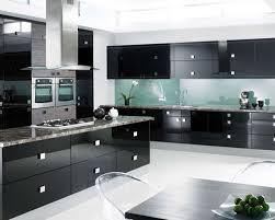 Ultra Modern Kitchen Cabinets by Kitchen Modern Black Kitchen Decor With Black Ultra Modern