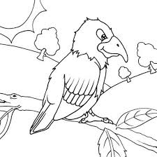 parrot forest coloring parrot forest coloring