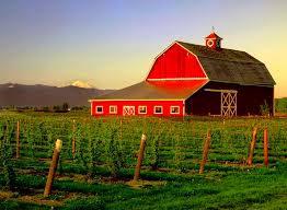 Red Barn Mt Vernon Mo 12 Best 10 Barns Farms Farm Animals Images On Pinterest Red