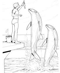 100 ideas dolphin picture to color on emergingartspdx com