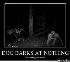 Dog Barking Meme - stupid dog barking without a reason by professorhaseeb meme center