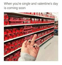 Single Valentine Meme - when you re single and valentine s day is coming soon funny meme