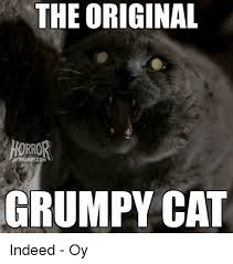 Original Grumpy Cat Meme - the original orro oftruantcom grumpy cat indeed oy meme on me me