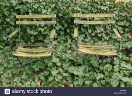 Flower Garden Chairs Two Old Garden Chairs In An Environment Of Hedera In A Private