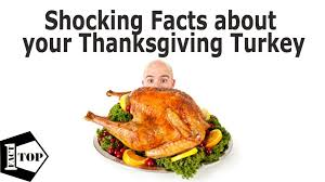 thanksgiving history of facts thanksgiving events inn