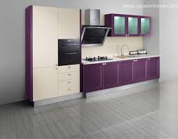 Purple Kitchens Design Ideas Awesome Purple Kitchens Design Ideas Gallery Home Design Ideas