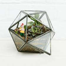 top 10 terrariums ideal home