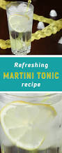 martini recipe martini tonic recipe yummy book