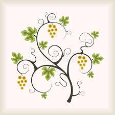 grape vine tree royalty free stock photo image 19203525