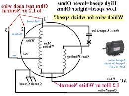 Hunter Ceiling Fan Capacitor Wiring Diagram by Ac Fan Wiring Magnatone With Cbb61 Capacitor Diagram Wordoflife Me
