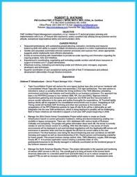 Federal Government Resume Template Federal Government Resume Example Http Www Resumecareer Info