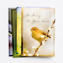 boxed everyday greeting cards dayspring