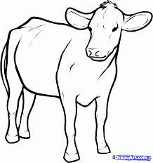 how to draw cows roadrunnersae