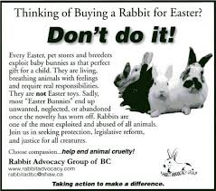 bunnies for easter psa easter caign