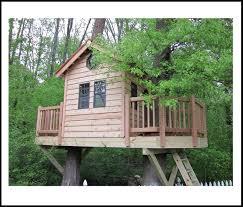 three house tree house plans design