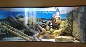 Amazing Reptile Habitat Accessories To Decorate Reptile Home - Habitat home decor