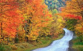 12 beautiful maine fall foliage locations travel leisure