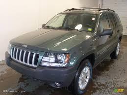 cherokee jeep 2004 2004 onyx green pearl jeep grand cherokee laredo 4x4 25891005