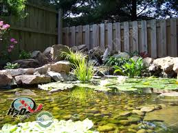 Pond With Stone Waterfall And Koi I Would Love To Have A Small - Backyard pond designs small