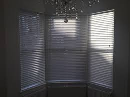 tinted window blinds salluma