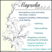 healing with magnolia trees white light spiral elixir