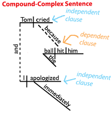 sentence patterns english exercises sentence structure learn about the four types of sentences