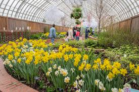 Phipps Conservatory Botanical Gardens by Best Things To Do In Pittsburgh Including Phipps Conservatory