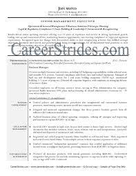 sle of functional resume resume business management sales management lewesmr