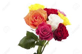 Multi Colored Roses Bouquet Of Multi Colored Roses Stock Photo Picture And Royalty