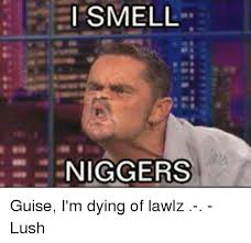 Funny Nigger Memes - 25 best memes about i smell niggers i smell niggers memes
