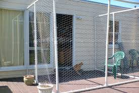 7 extreme dog u0026 cat diy projects for your backyard