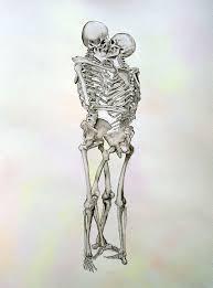 Anatomy Of The Human Skeleton Best 25 Skeleton Love Ideas On Pinterest Skeleton Skeleton